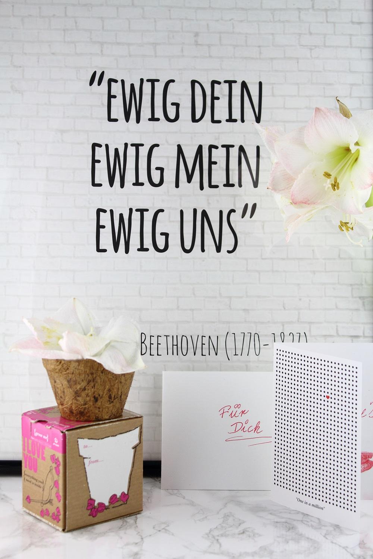 Valentinsschatz - Geschenkideen für den Liebsten - Radbag