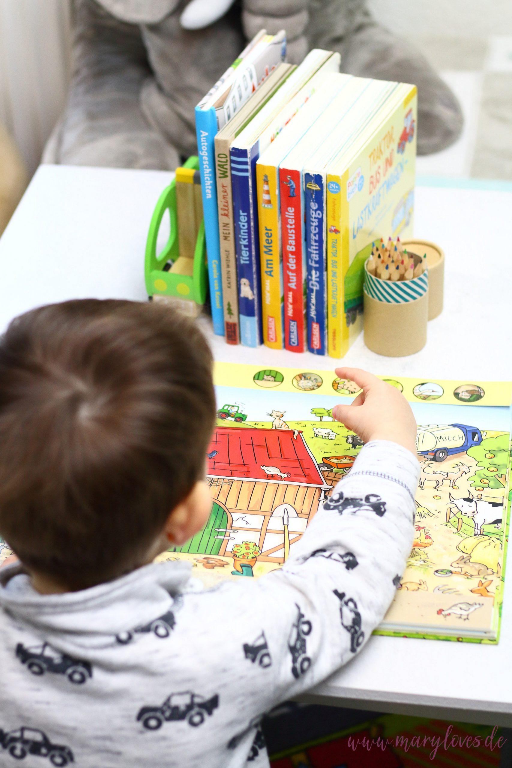 11 Spiel- & Beschäftigungsideen für Kleinkinder bei schlechten Wetter. - Tipp 9: Bücher lesen, vorlesen oder anschauen