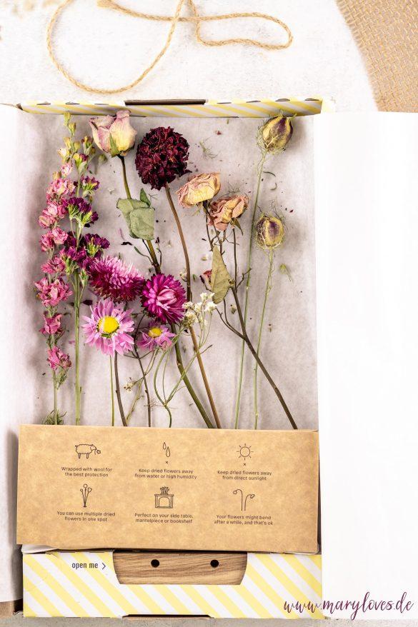 bloomon Flowergram getrocknete Blumen